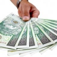 Więcej o: Kredyt z dopłatami ARiMR