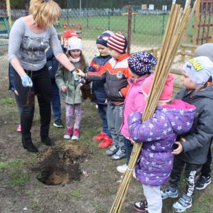 Więcej o: Dzień Ziemi w Przedszkolu