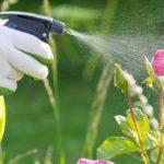 Komunikat wsprawie bezpiecznego stosowania środków ochrony roślin