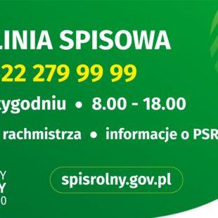 Więcej o: Infolinia PSR 2020